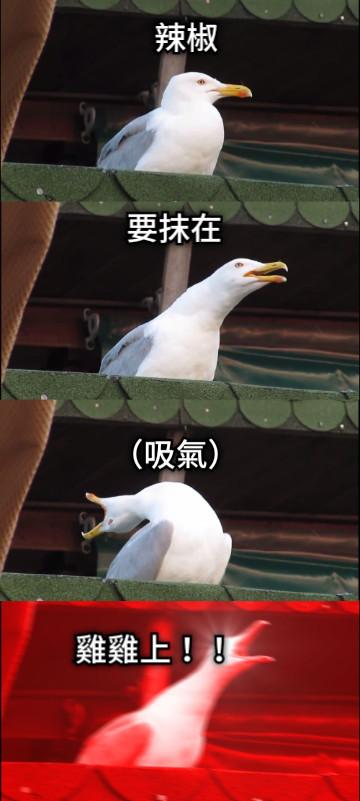 辣椒 要抹在 (吸氣) 雞雞上!!