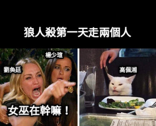 女巫在幹嘛! 狼人殺第一天走兩個人 劉奐廷 楊少瑄 高佩湘