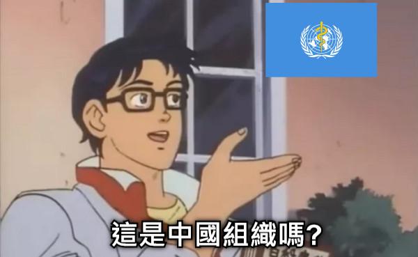 這是中國組織嗎?