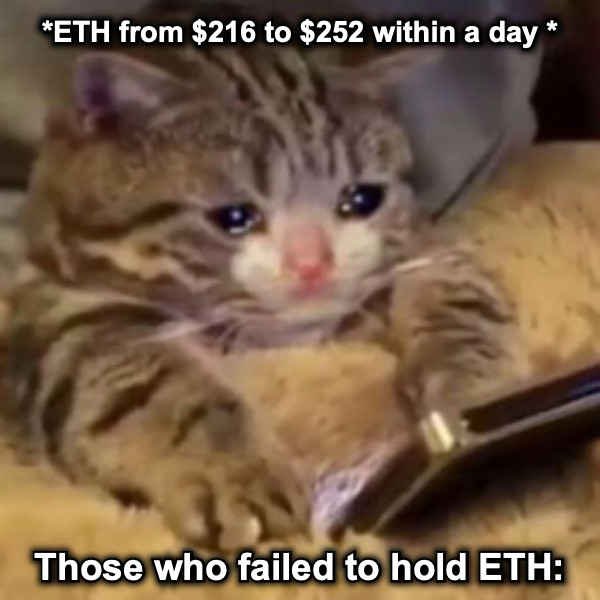 *ETH from $216 to $252 within a day * Those who failed to hold ETH: