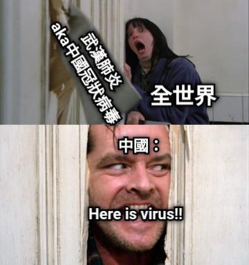武漢肺炎  aka中國冠狀病毒 全世界 中國: Here is virus!!