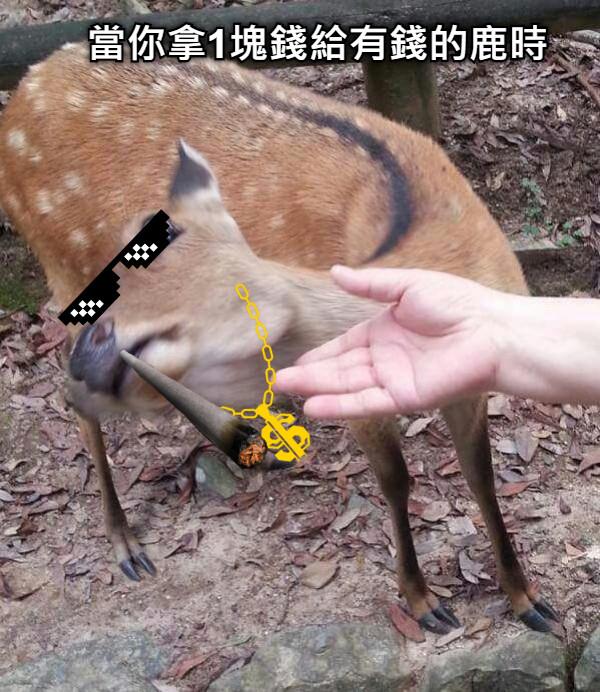 當你拿1塊錢給有錢的鹿時