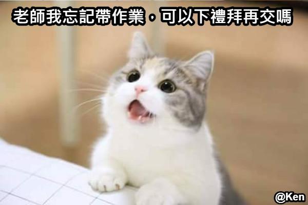 老師我忘記帶作業,可以下禮拜再交嗎