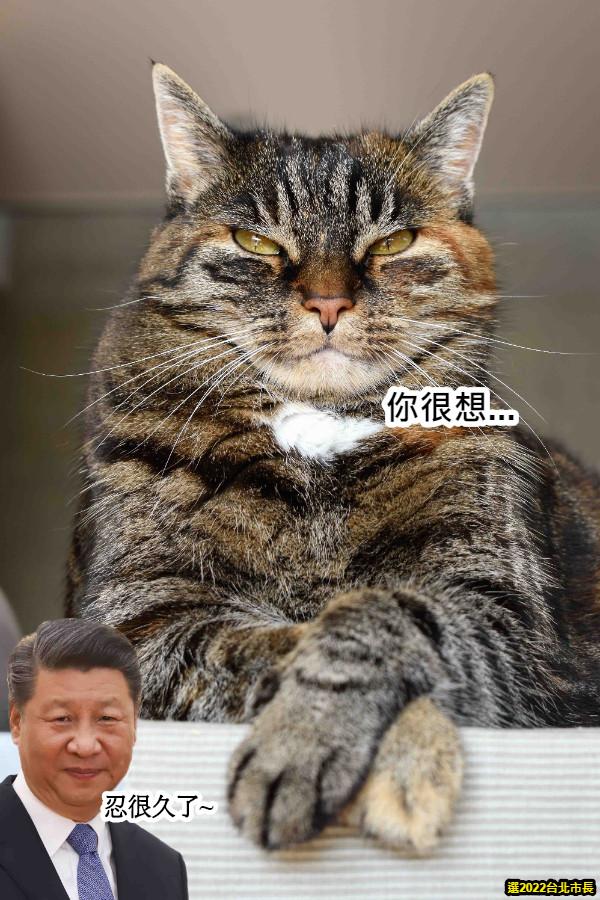 你很想... 忍很久了~ 選2022台北市長