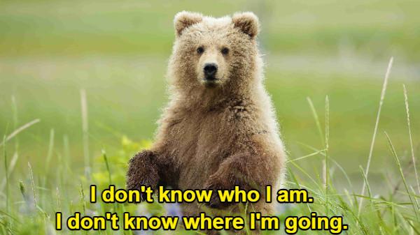 I don't know who I am. I don't know where I'm going.