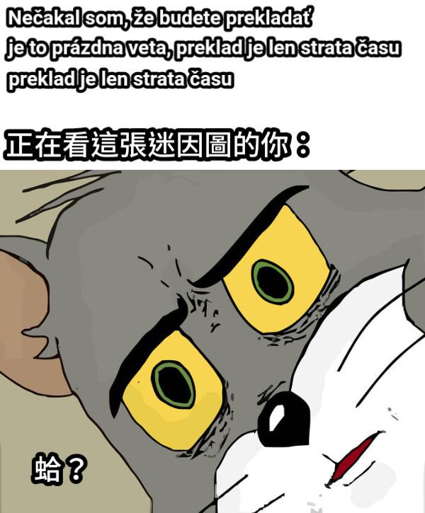 Nečakal som, že budete prekladať 正在看這張迷因圖的你: 蛤?  je to prázdna veta, preklad je len strata času preklad je len strata času