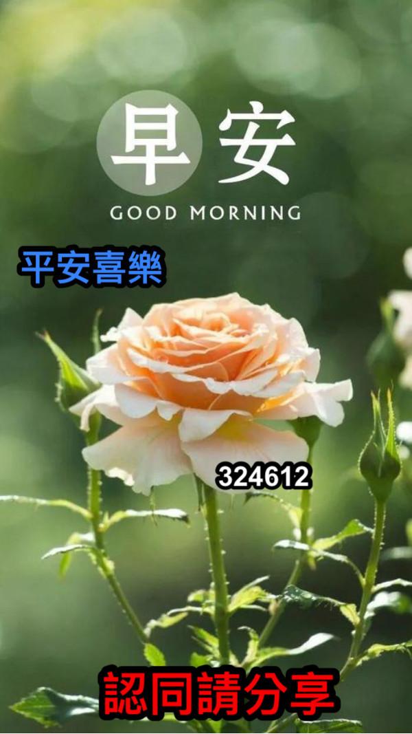 平安喜樂 324612 認同請分享