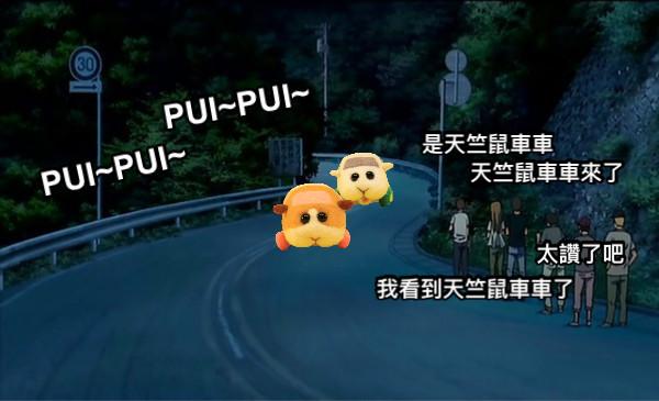 是天竺鼠車車         天竺鼠車車來了 太讚了吧 我看到天竺鼠車車了 PUI~PUI~ PUI~PUI~
