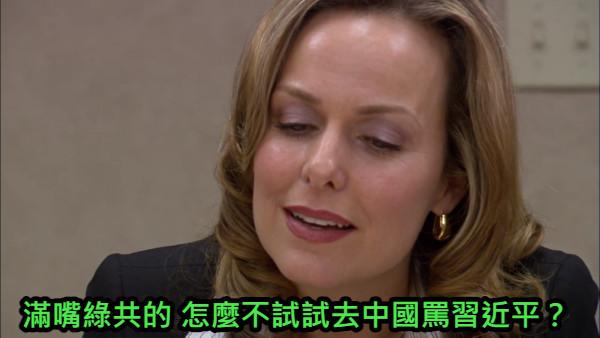 滿嘴綠共的 怎麼不試試去中國罵習近平?
